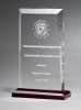 Apex Series Award with Red Highlights Traditional Acrylic Awards