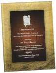 Gold & Burgundy Acrylic Art Plaque Award Achievement Awards