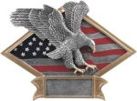 Diamond Plate Resin -Eagle All Trophy Awards