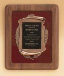 American Walnut Frame with Antique Bronze Casting Sales Awards