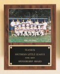 Plaque with Slide-in Photo or Certificate Holder Track Trophy Awards